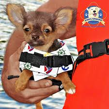Paws Aboard Xx Small Pet Preserver Dog Life Vest Jacket