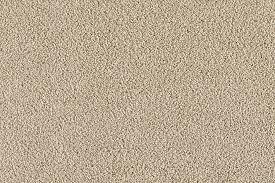 Tan Carpet Floor And Tan Carpet Floor Tasteful Tan