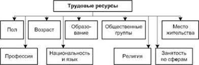 Повышение эффективности использования трудовых ресурсов  Рисунок 1 2 Структура трудовых ресурсов