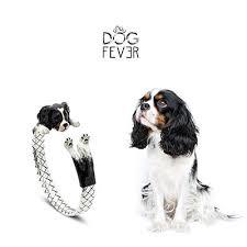 fever dog