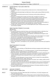 Director Product Manager Resume Samples Velvet Jobs