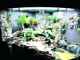 line terrarium waterfall diy a well lit dart frog enclosure poison how to build