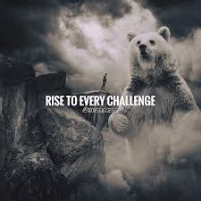 Challenge Quotes Adorable Positive Quotes Rise To Every Challenge Quotes Boxes You