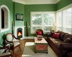living room with green walls fabulous small living