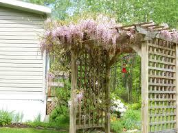 Trellis: Decorating Arbor With Trellises For Outdoor Decoration Ideas Bunch  Ideas Of Decorative Trellis Ideas