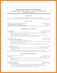 Audit Clerk Sample Resume C Developer Sample Resume