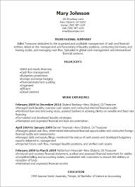 Resume Templates: Treasurer Resume