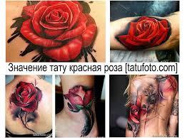 значение тату красная роза смысл фото рисунков эскизы толкование