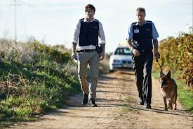 10 jobs for problem solvers police detectives