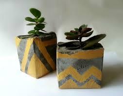 introduction diy concrete planters