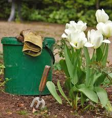 urban gardening ideas increase well