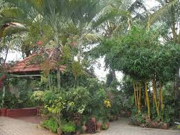 Small Picture Ethnic Indian Home Kaveri Chinnappas Coorg inspired home in