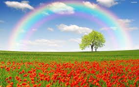 rainbow wallpapers full hd wallpaper search rainbows