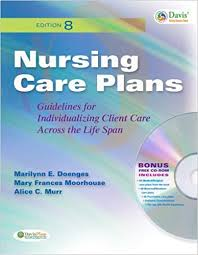 Nursing Care Plans Guidelines For Individualizing Client Care