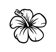 by by of how to draw flowers step by step for beginners how to draw a tropical flower step 6 598 844 drawing