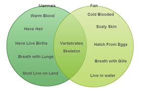 Comparison Venn Diagram How To Determine Which Diagram To Use For Various Scenarios