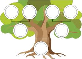 my family tree template family tree template poster free early years primary