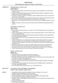 Digital Consultant Resume Samples Velvet Jobs