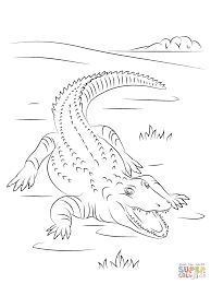 Small Picture Cute Nile Crocodile coloring page Free Printable Coloring Pages