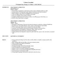 Industrial Mechanic Millwright Resume Sample Millwright Apprentice Resume Samples Velvet Jobs 14