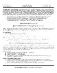 Sales Rep Resume Resume Format For Medical Representative Sales