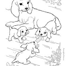 Small Picture Coloring Pages Farm Animals And Their Babies Archives Mente Beta