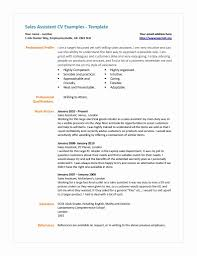 Cover Letter Cv Template Shop Assistant Uk Ne Cs Org Sales Cv Photo
