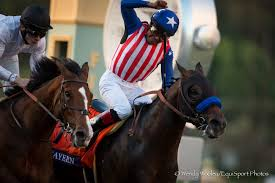 2014 Breeders Cup Charts Classic Bayern Survives Inquiry Gives Baffert First