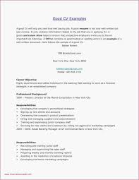 Careerbuilder Resume Templates Professional Career Builder Resume