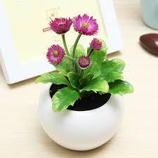 decorative plants for office. SKU187510-2.jpg Decorative Plants For Office