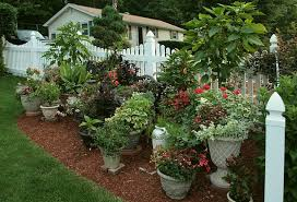 Small Picture Garden Design Garden Design with Container Garden Plants Stock