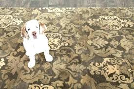 best area rugs for pets pet proof area rugs pet proof area rugs rug pad pet