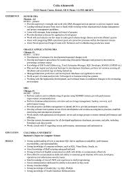 Dba Resume Samples | Velvet Jobs