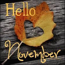 Image result for november pictures