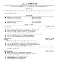 Sales Summary Resume Gap Sales Associate Resume Retail Summary Examples Sample High End