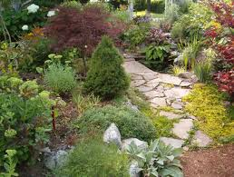 front yard landscaping toronto details