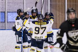 Hv71 live score (and video online live stream*), schedule and results from all. Dam Good Jessica Healey Heats Up For Hv71 The Ice Garden
