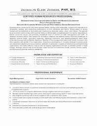 Professional Server Resume Delectable Server Resume Skills Examples College Graduate Resume Example