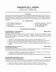 033 Template Ideas Sample Key Account Manager Resume Best Of
