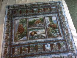 Using Fabric Panels in Quilts | Quilts | Pinterest | Fabric panels ... & Using Fabric Panels in Quilts Adamdwight.com
