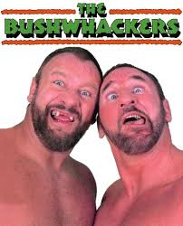 Image result for bushwhackers