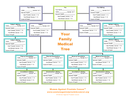 powerpoint family tree template 100 family tree chart template powerpoint jdmcox software