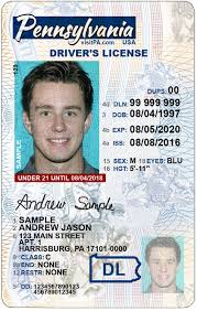 License Pa Pa Drivers Renewal Drivers