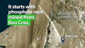 Precious rock New Zealand is accused of stealing from the Sahara    Stuff.co.nz