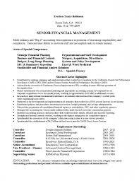 Audit Senior Resume Samples Velvet Jobs Big Four Resume Sample