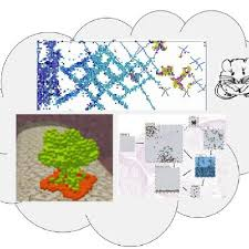 Towards an in silico organism: three reactive animation models of... |  Download Scientific Diagram