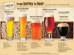 A Colorful Look At The Journey Of Barley To Beer