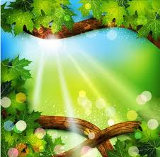 Glowing Green Nature Frame With Sunlight Vector Free Download