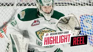 2018-19 HIGHLIGHT REEL | Dustin Wolf - YouTube