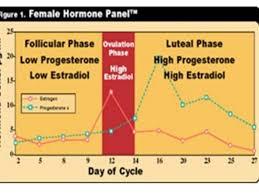 Bioidentical Hormones Ottawa Weight Weight Loss Diet
